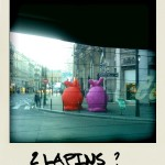 Ce matin 2 lapins devant le printemps