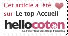 Elu TOP sur ACCUEIL Hellocoton