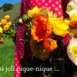 pique-nique-bonheur-by-libelul