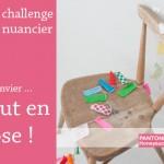 le-challenge-nuancier-janvier-by-libelul