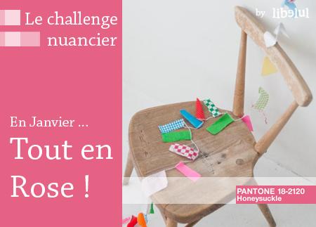http://libelul.com/wp-content/uploads/2011/01/le-challenge-nuancier-janvier-by-libelul.jpg