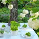 green-picnic