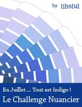 http://libelul.com/wp-content/uploads/2011/06/libelul-banner-challenge-nuancier-201107.jpg