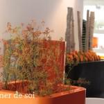 fleurs-automne-by-libelul