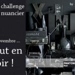 libelul-banner-challenge-nuancier6-201111