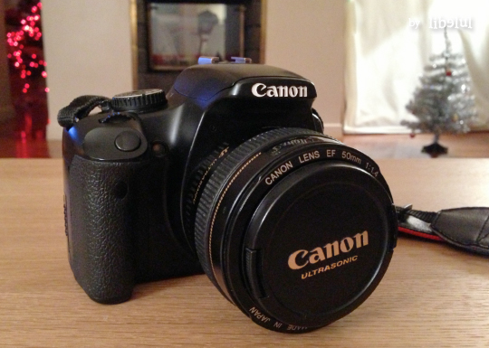 canon-dilemme-by-libelul
