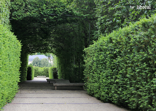 jardin-imaginaire-11-by-libelul