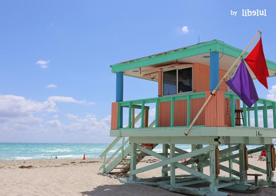 miami-beach-by-libelul