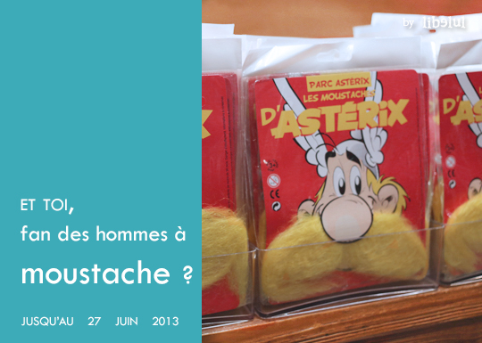 giveaway-parcasterix-by-libelul