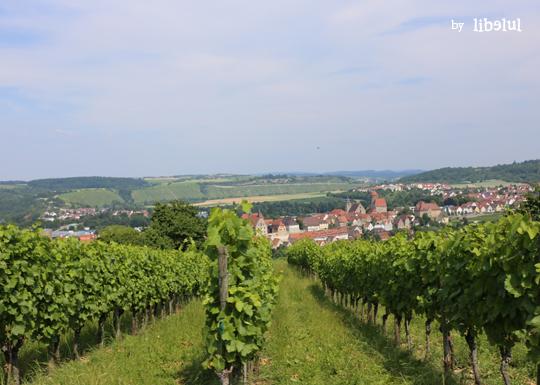 wine-01-by-libelul
